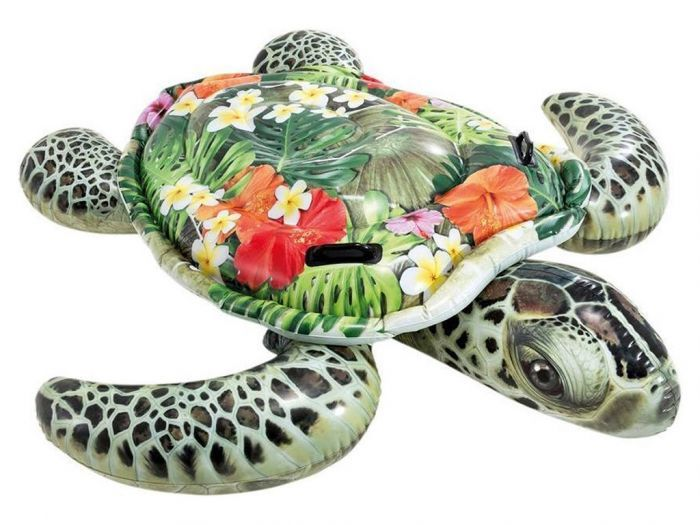 Intex Zee Schildpad Ride-On
